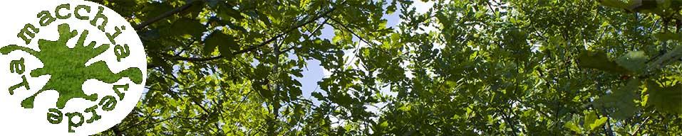 La Macchia Verde