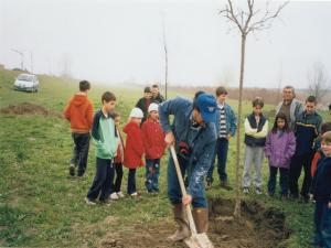 Festa degli Alberi 2002